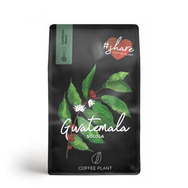 Coffee Plant Gwatemala Solola 250 g